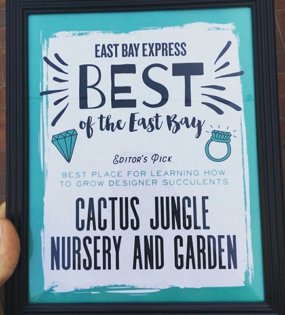 Garden By The Bay August 2017 best of the east bay - cactus jungle